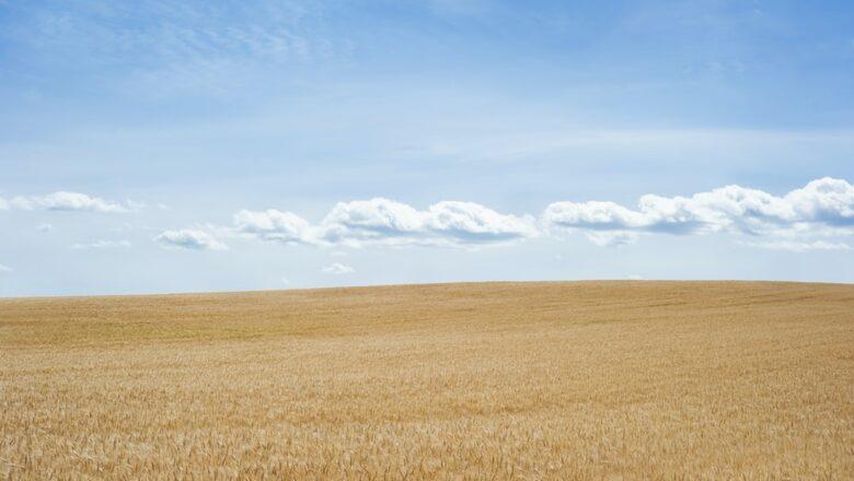 Mobile Land Survey – Types of Surveys